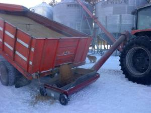 Here we are moving grain at -40 degrees in the winter.
