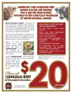 Meyer's Natural Beef